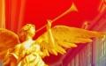 Festiwal Szwarlika - wyniki eliminacji rejonowych
