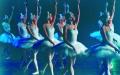 ,,JEZIORO ŁABĘDZIE'' w wykonaniu ROYAL RUSSIAN BALLET