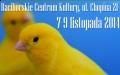Wystawa kanarków i ptaków egzotycznych