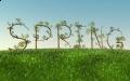 1 Dzień Wiosny!